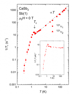 Observation of s-wave superconductivity in CaSb2